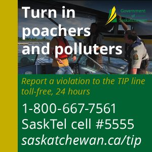 Turn in poachers and polluters