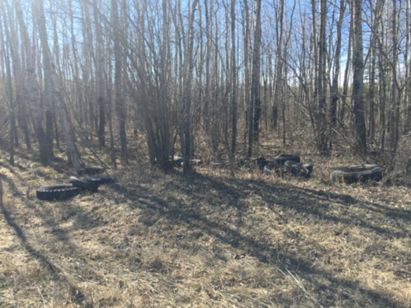 Illegal Dumping on Crown Land Near Dorintosh