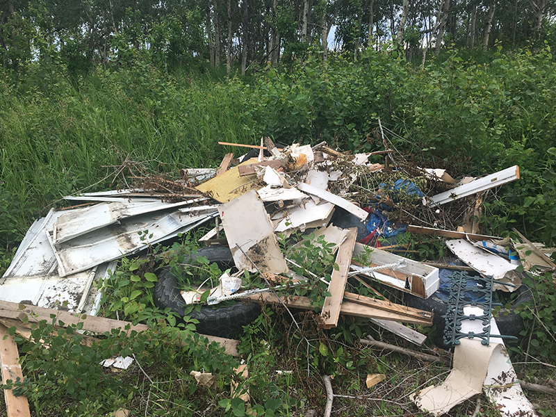 Illegal Dumping in the Pleasantdale Area